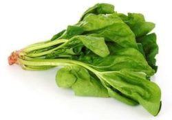 Does Spinach Increase Testosterone?
